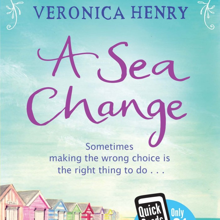BBC Skillswise selects A Sea Change as Book of the Month